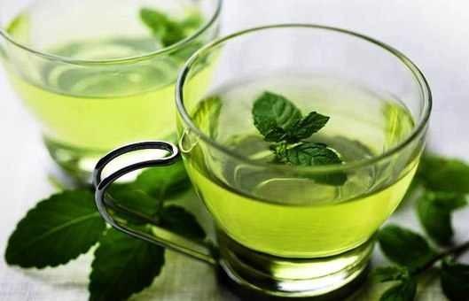 كيفية حفظ النعناع أخضر طازج-1